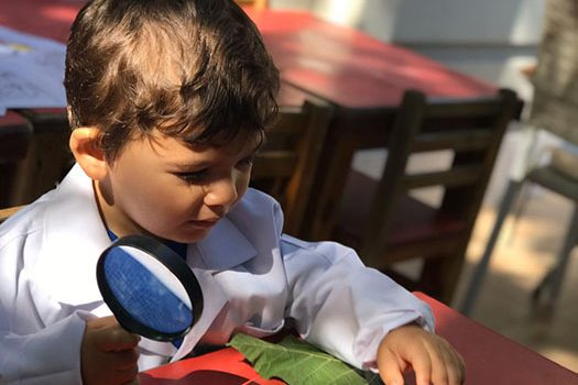 Gözlemle ve Öğren! Büyüteç Çocukların Bilim Becerilerini Nasıl Geliştirir?